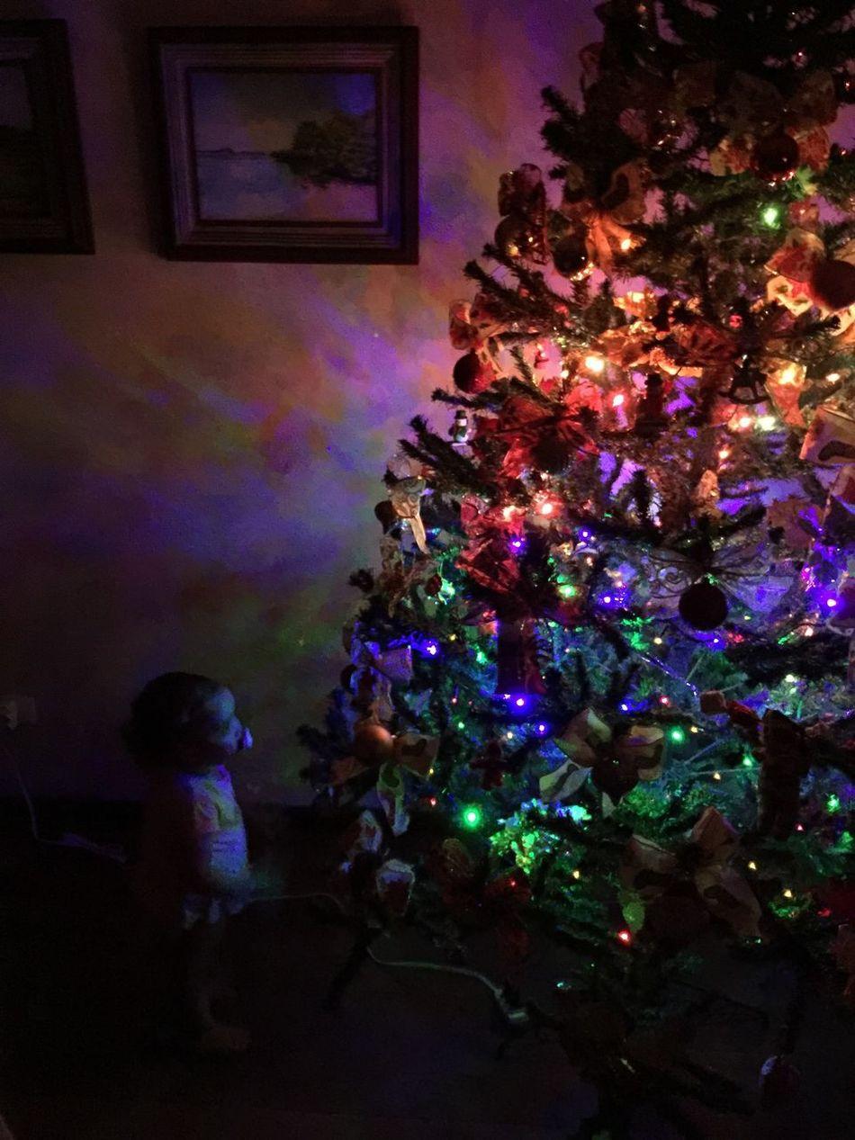 E o Amor pelo Natal é renovado... // And The Love for Christmas is Renewed... Christmas Tree Christmas LoveGeneration GodIsNotDead