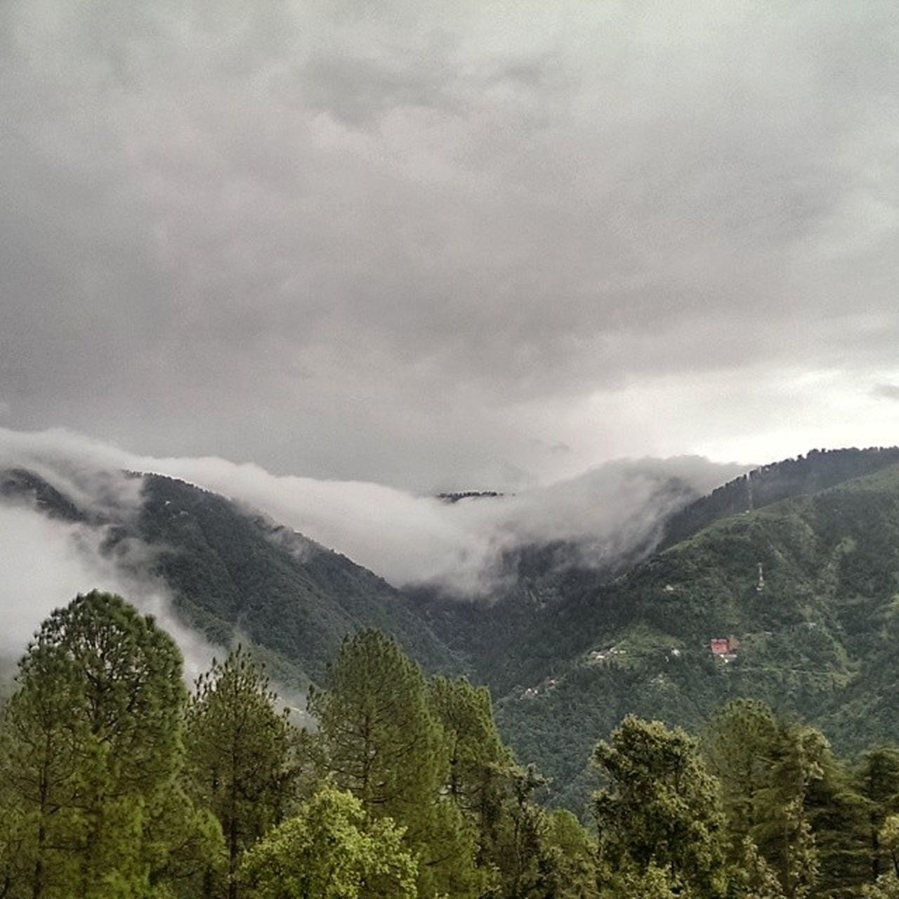 nature, mountain, beauty in nature, sky, landscape, tree, outdoors, scenics, forest, day, no people, scenery, range