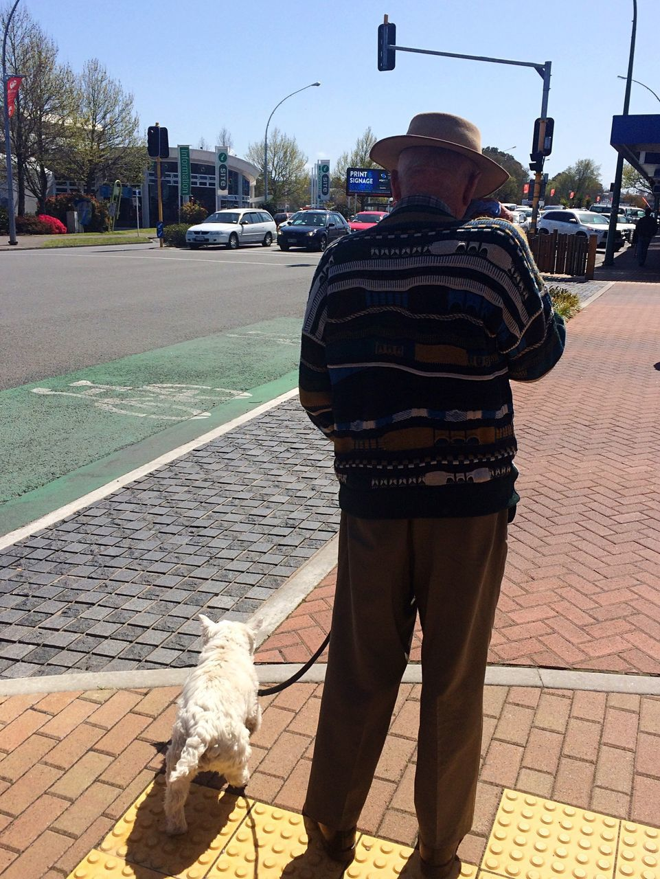 dog, rear view, pets, real people, one animal, domestic animals, mammal, outdoors, day, standing, full length, street, one person, men, lifestyles, road, city, sky, people