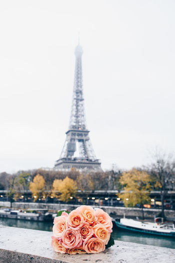 Another romantic Paris view Eiffel Tower Love Marraige Married Pink Romantic Wedding Wedding Photography Bouquet Ceremony City Day Elopement Flower Focus On Foreground No People Outdoors Peach Roses Tourism Tower Travel Travel Destinations Water Wedding Day
