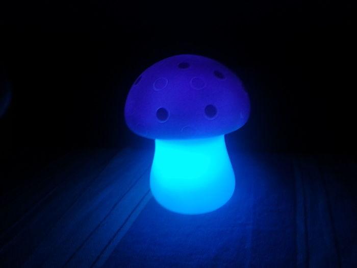 Black Background Blue Dark Electricity  Glowing Glowing Mushroom Glowing Mushrooms Illuminated Luminosity Mushroom Spotted