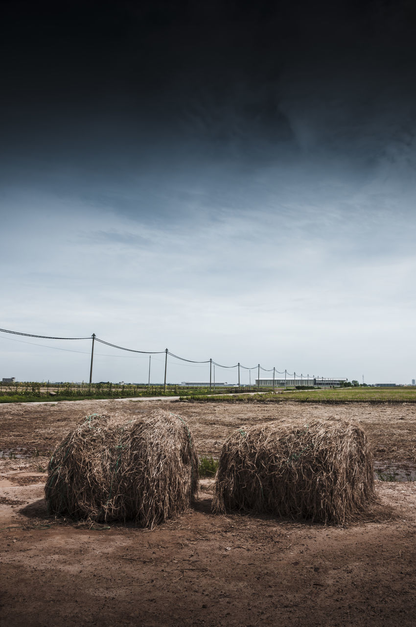 bale, hay, field, agriculture, hay bale, farm, rural scene, sky, outdoors, haystack, day, no people, cloud - sky, nature, landscape