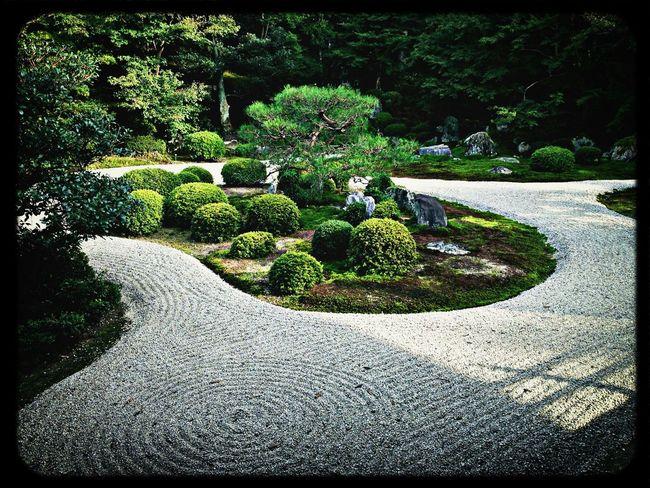 亀島 Temple Japanese Garden White Sand Trees