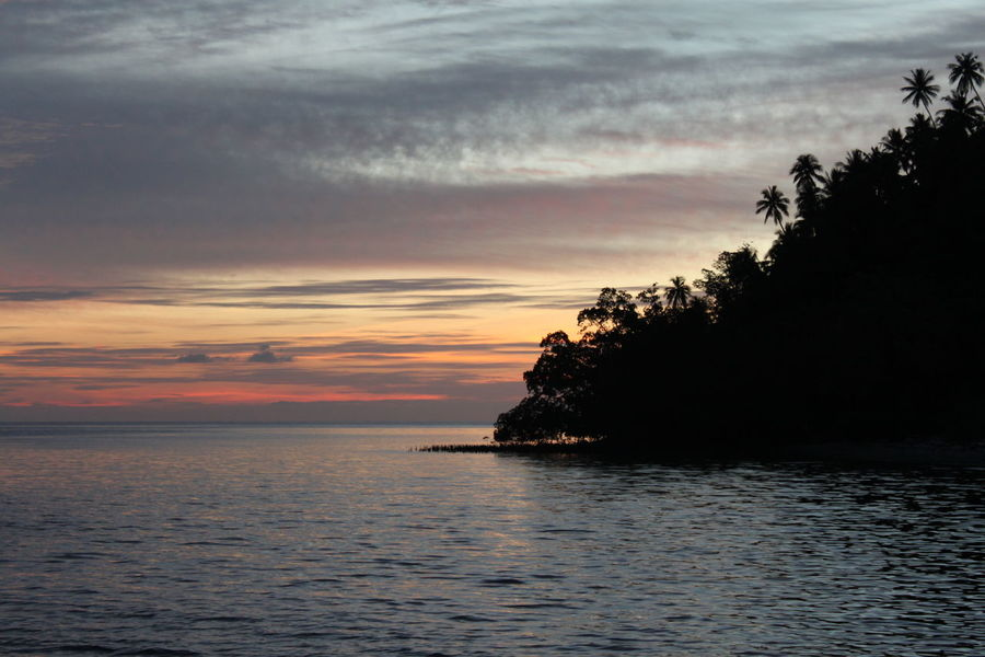 Beauty In Nature Day Horizon Over Water Nature No People Outdoors Scenics Sea Silhouette Sky Sunset Tranquil Scene Tranquility Tree Water Waterfront