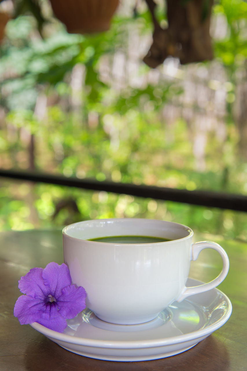 refreshment, freshness, no people, saucer, table, focus on foreground, food and drink, close-up, drink, day, flower, indoors