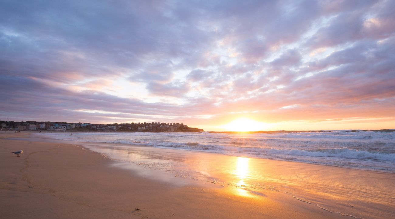 Bondi beach @ sunrise Bondi Bondi Beach Icebergs Sydney, Australia Sydney Beach Beachphotography Beach Life