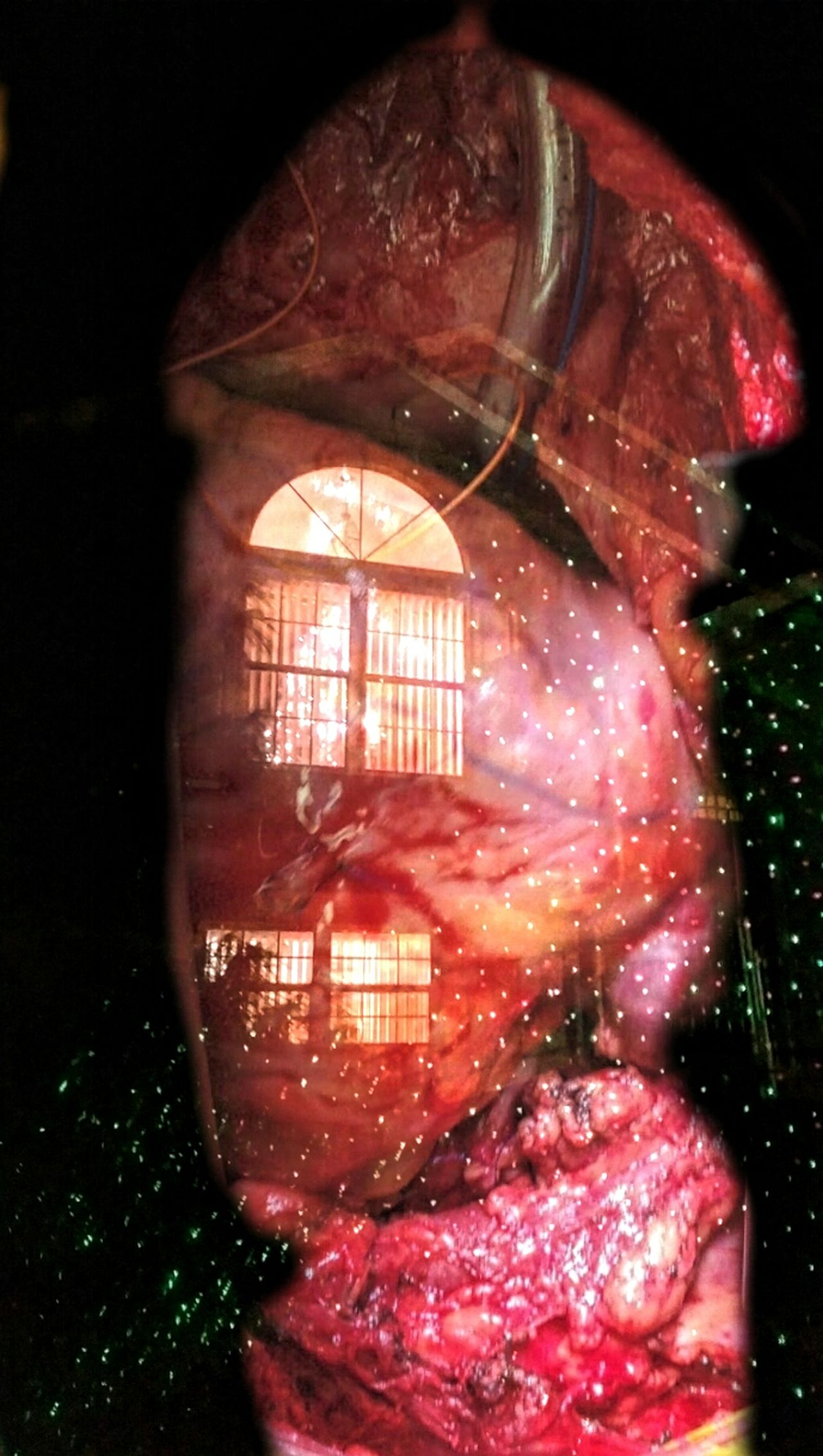 https://youtu.be/lLRU82vMpcQ Guide me back home. Home Is Where The Heart Is Tis The Season The Human Condition Inside Out Alien Light Christmas Decorations Home Tree Home Through The Glass Creative Light And Shadow Musical Photos Lyricalartistry The Impurist Heart
