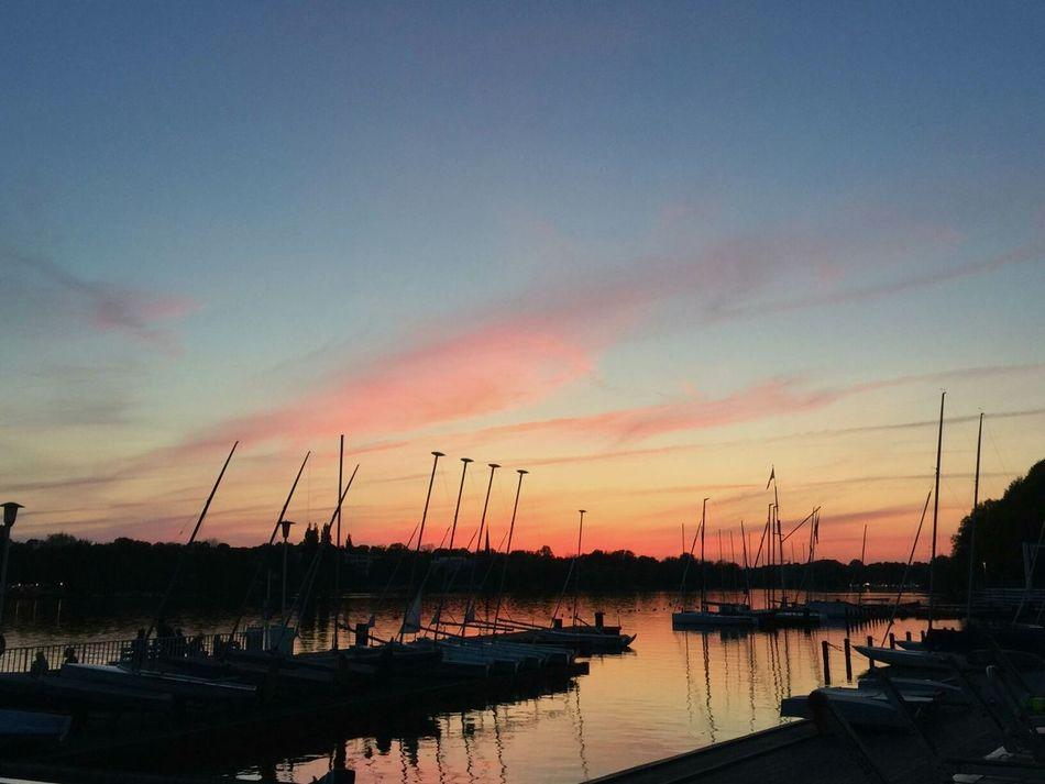 Germany Deutschland Scence Gorgeous Boat Sailing Dawn Summer Sunset Riverbank First Eyeem Photo Firsteyeemphoto