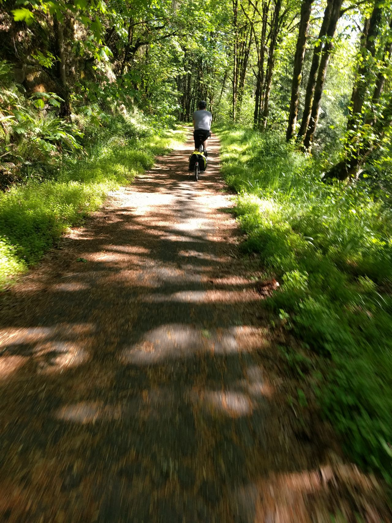 Bicyclist Bike Path Bike Trail Gravel Path Gravel Road Multi-use Path Trail