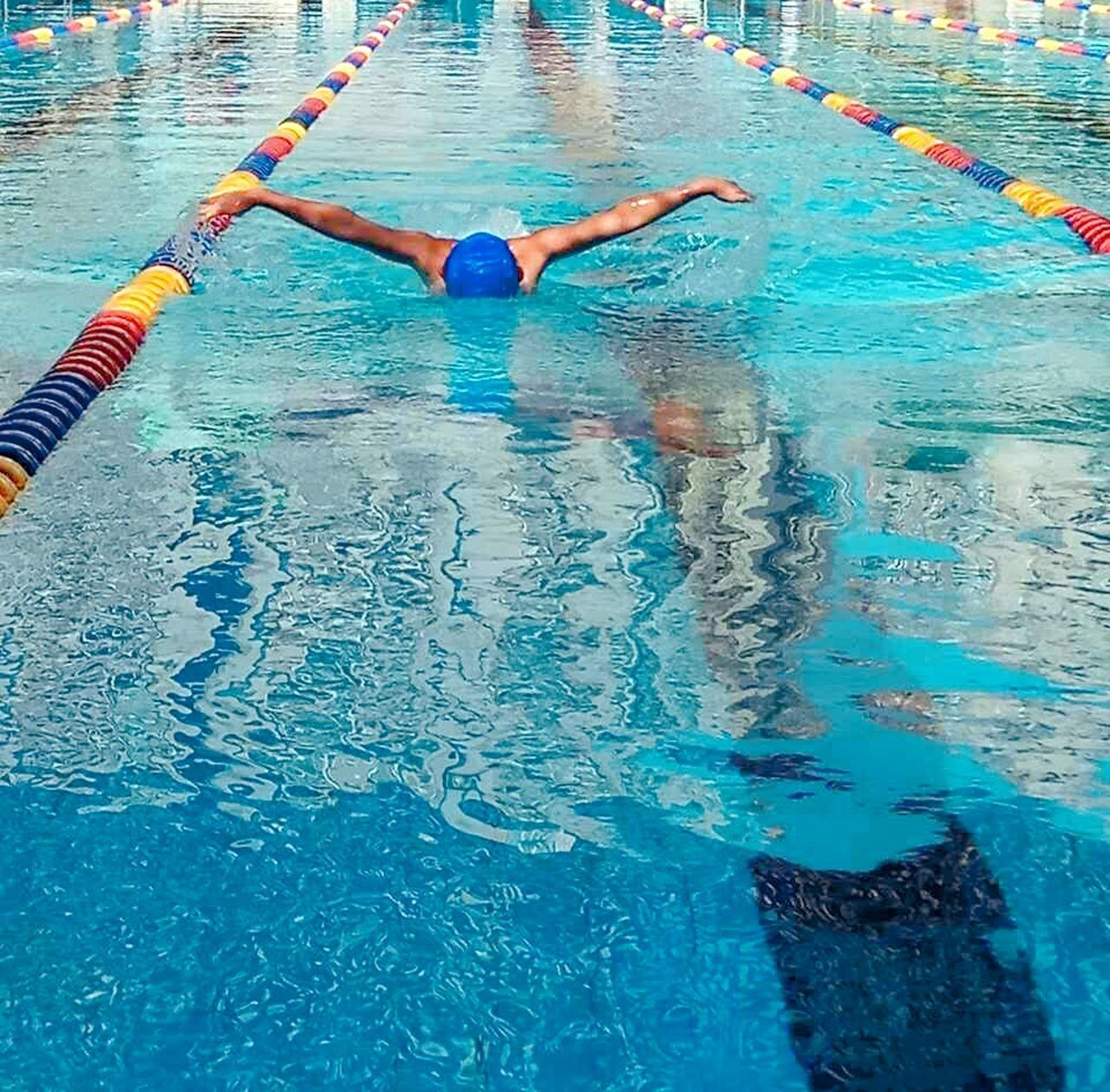 swimming pool, water, swimming, real people, young adult, vitality, swimming lane marker, one person, day, outdoors, young women, exercising, full length, sport, women, competition, competitive sport, athlete, adult, adults only, people