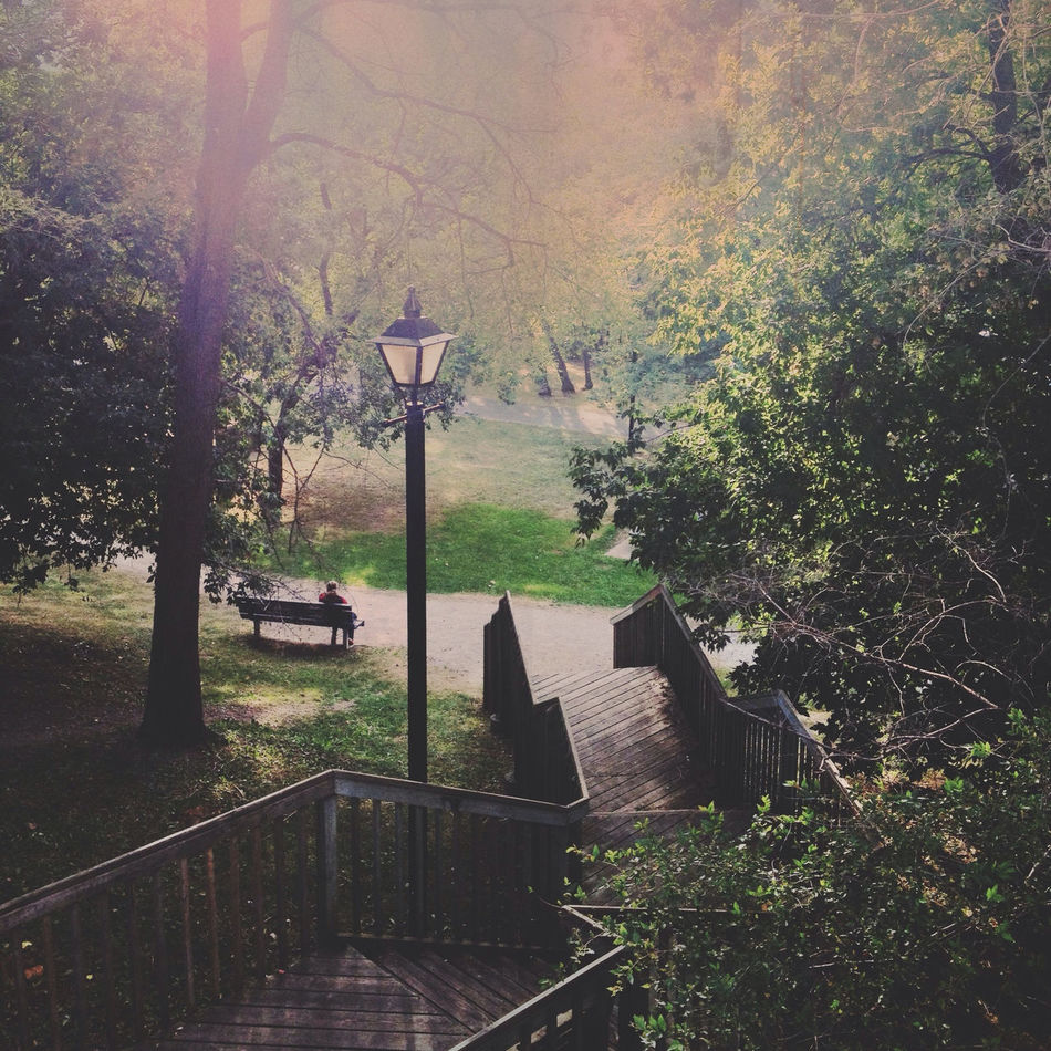 Beautiful stock photos of park, Day, Lamp Post, Nature, One Person