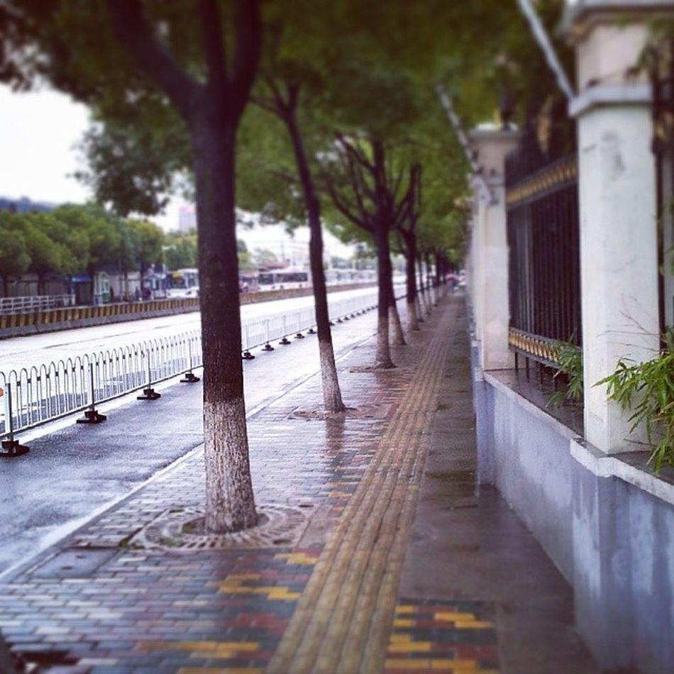 Streetlevel Scenes Cool Cold Lines StreetScenes