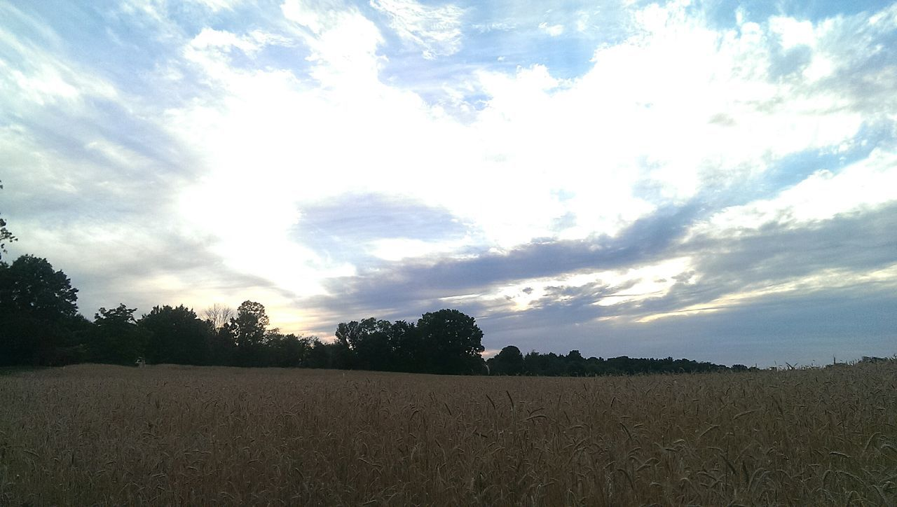 Sky Clouds Sunset Field Of Dreams Heavens 43 Golden Moments