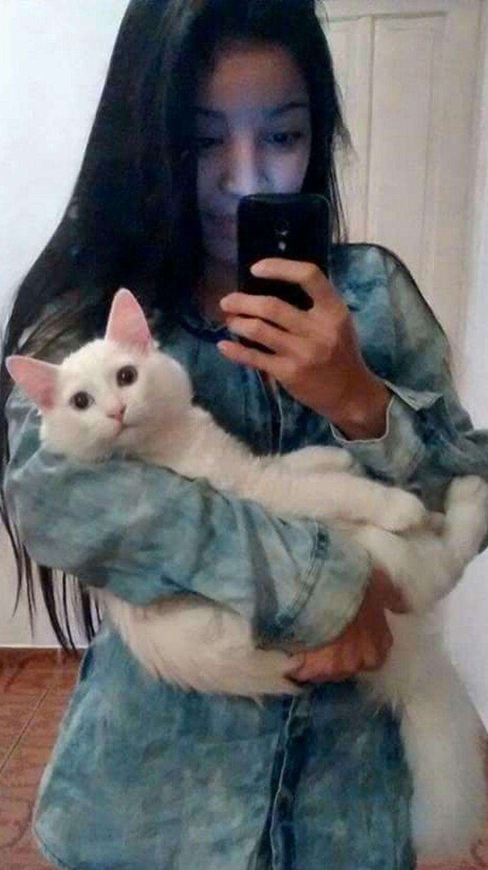 Cat Cat Lovers Angoracat First Eyeem Photo