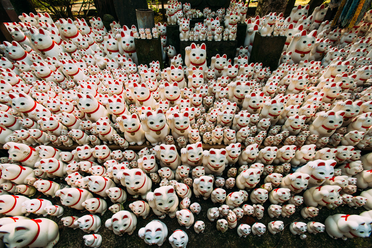 "Gotokuji, the ""cat temple"" in Tokyo. Cat Cat Temple, Doll Gotokuji J Japan Lucky Cat Manekineko Place Of Worship Quirky Religion Religious  Temple Worship EyeEmNewHere"