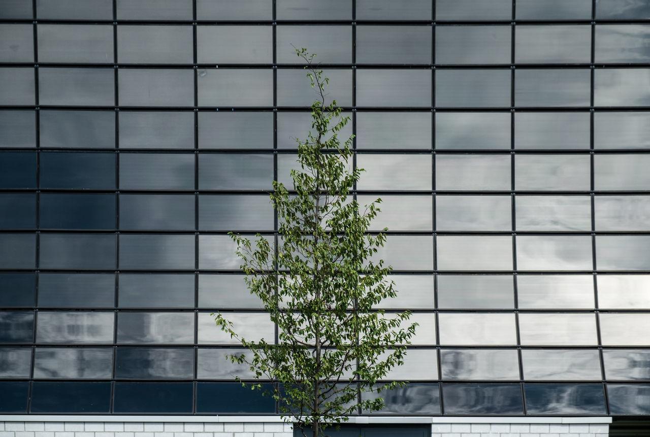 Beautiful stock photos of business,  Architecture,  Berlin,  Building,  Building Exterior
