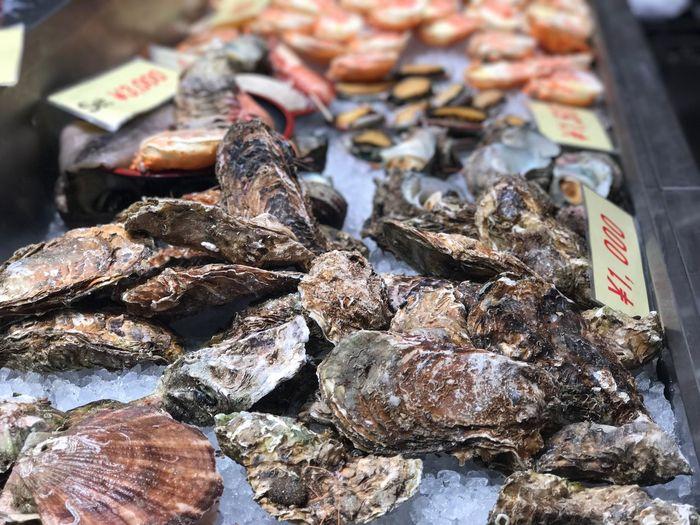 Seafood Raw Food Freshseafood