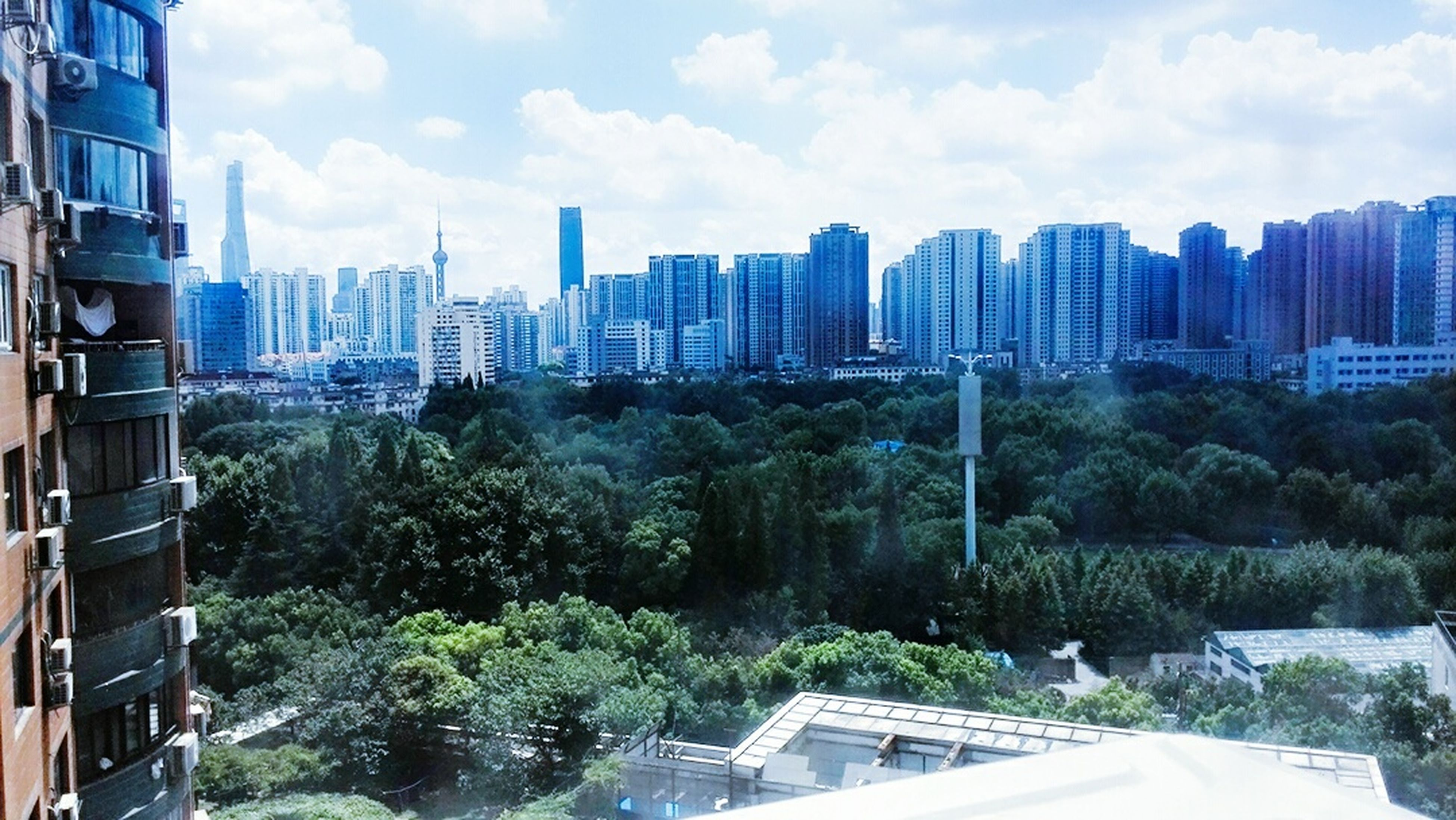 city, sky, growth, tree, cityscape, urban skyline, skyscraper, cloud - sky, architecture, outdoors, building exterior, no people, day, nature