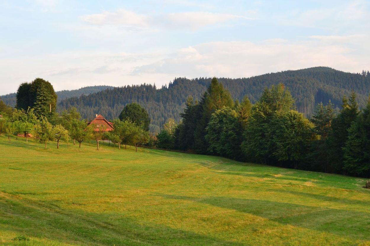 Idyllic Landscape Mountain Nature No People Outdoors Scenics Tree Czech Republic Beskydy