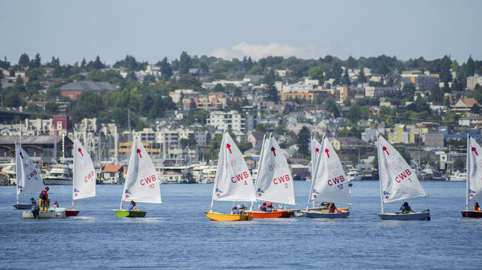 Sailboat racing school Architecture Building Exterior Built Structure Center For Wooden Boats City Cityscape Colorful Competition Day Jet Boat Learning Mode Of Transport Nature Nautical Vessel No People Outdoors Sailboats School Sea Sky Teaching Transportation Vacations Water Waterfront