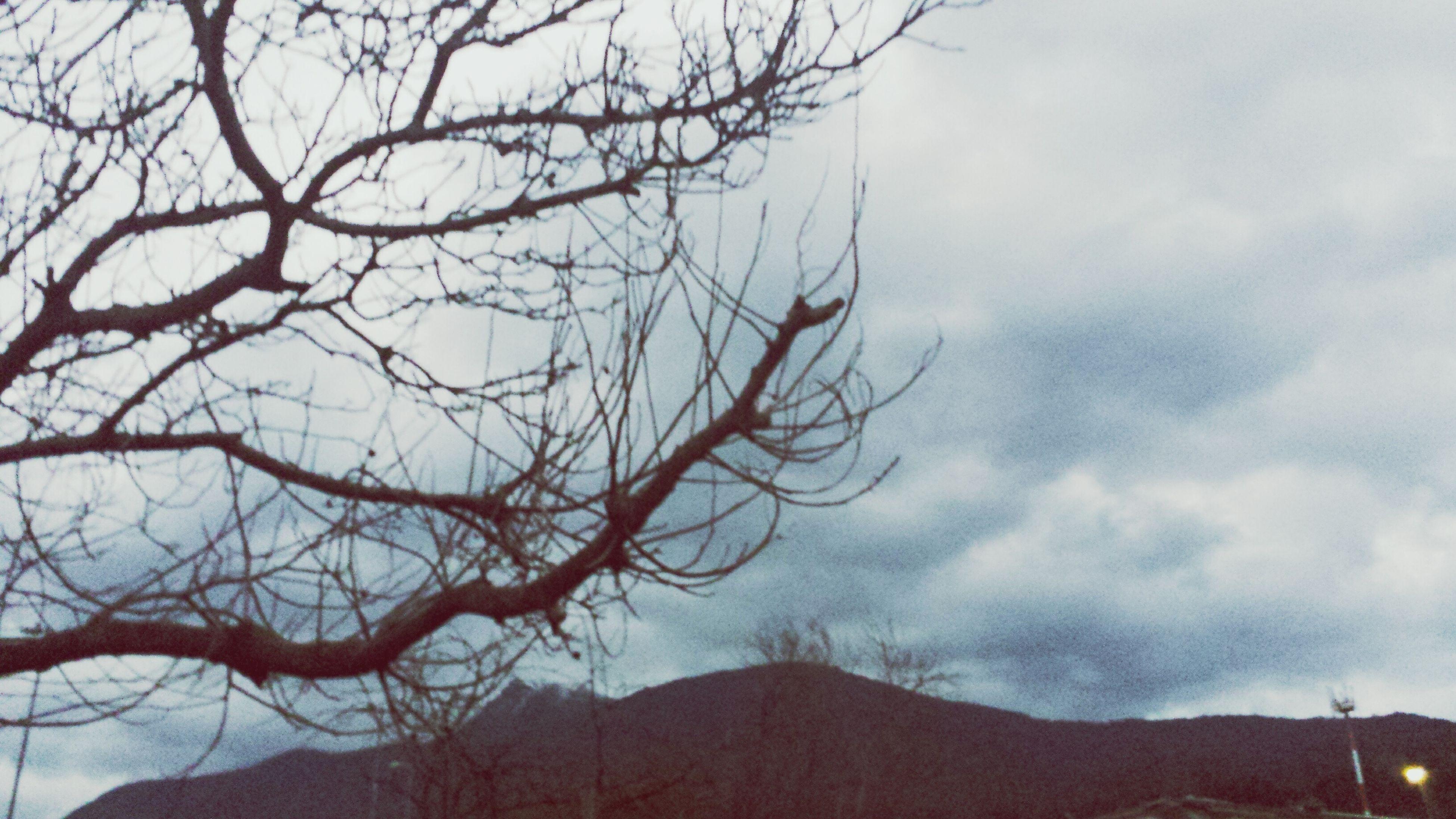 Día y lluvia, invierno 😃 Rain Day Enjoying Life Chile♥ Chile Antuco
