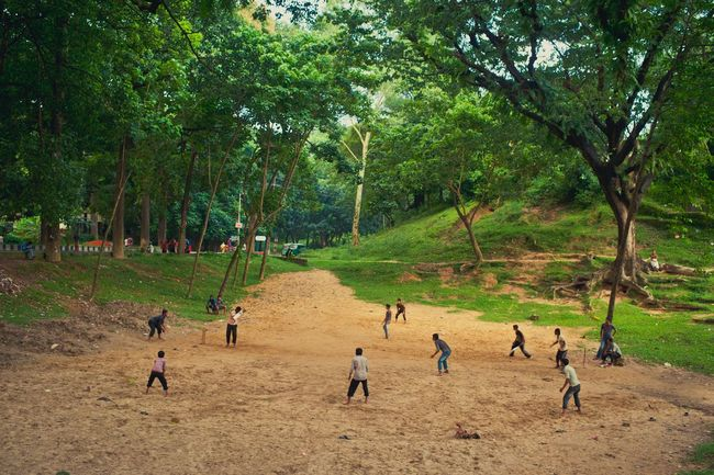 My Country In A Photoplaying cricket in an open field. My Hobby