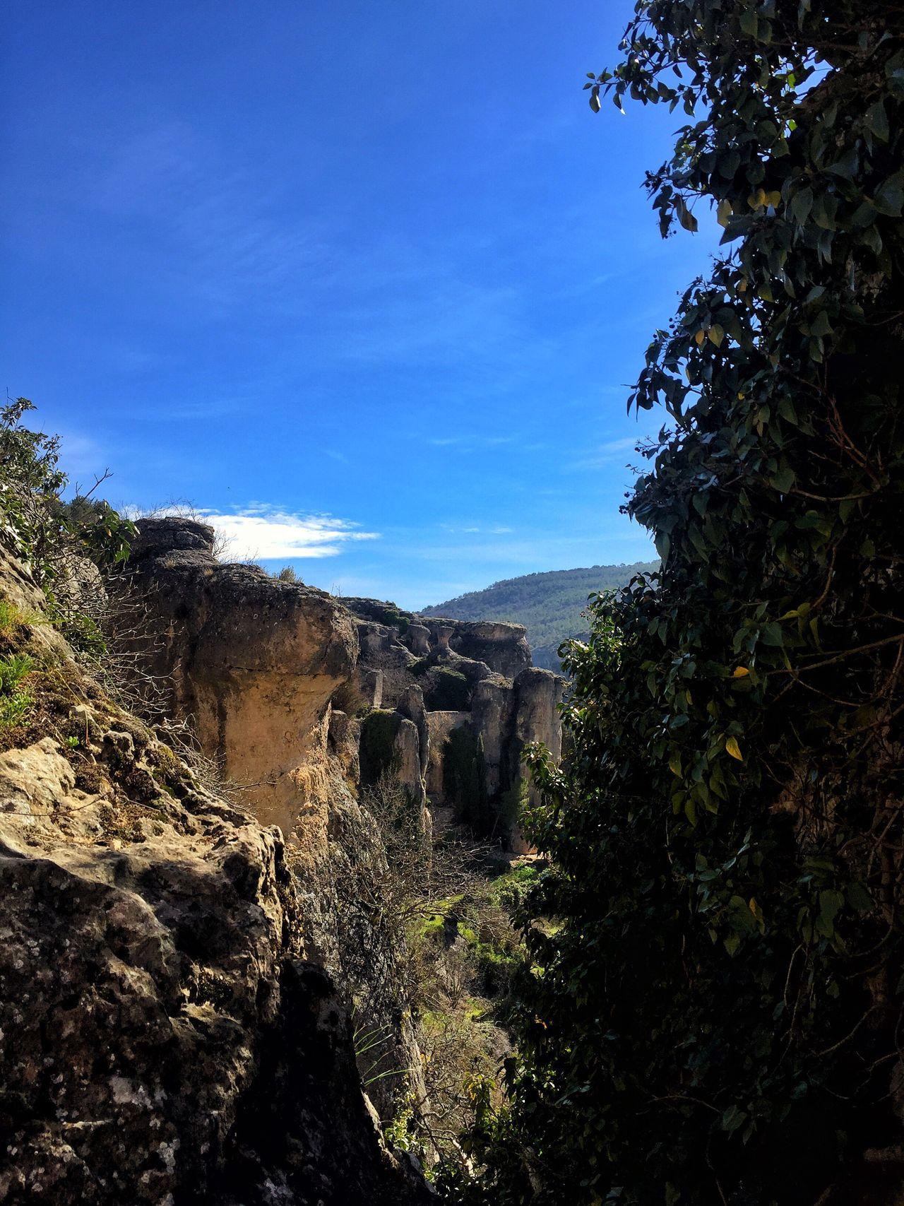 Nature Cuenca