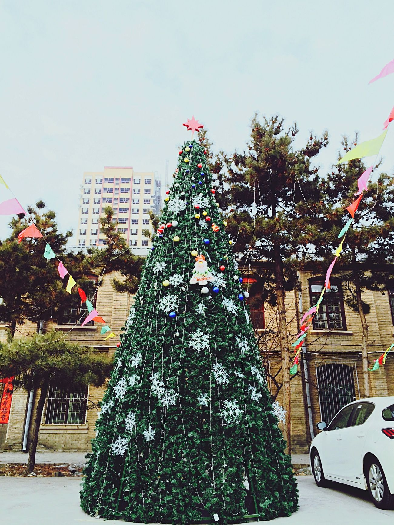 Christmas Around The World Christmas Tree Christmastime Christmas Decorations MerryChristmas