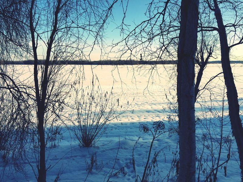 Relaxing Nature Surgut  Winter давно Я не выкладывал природы))