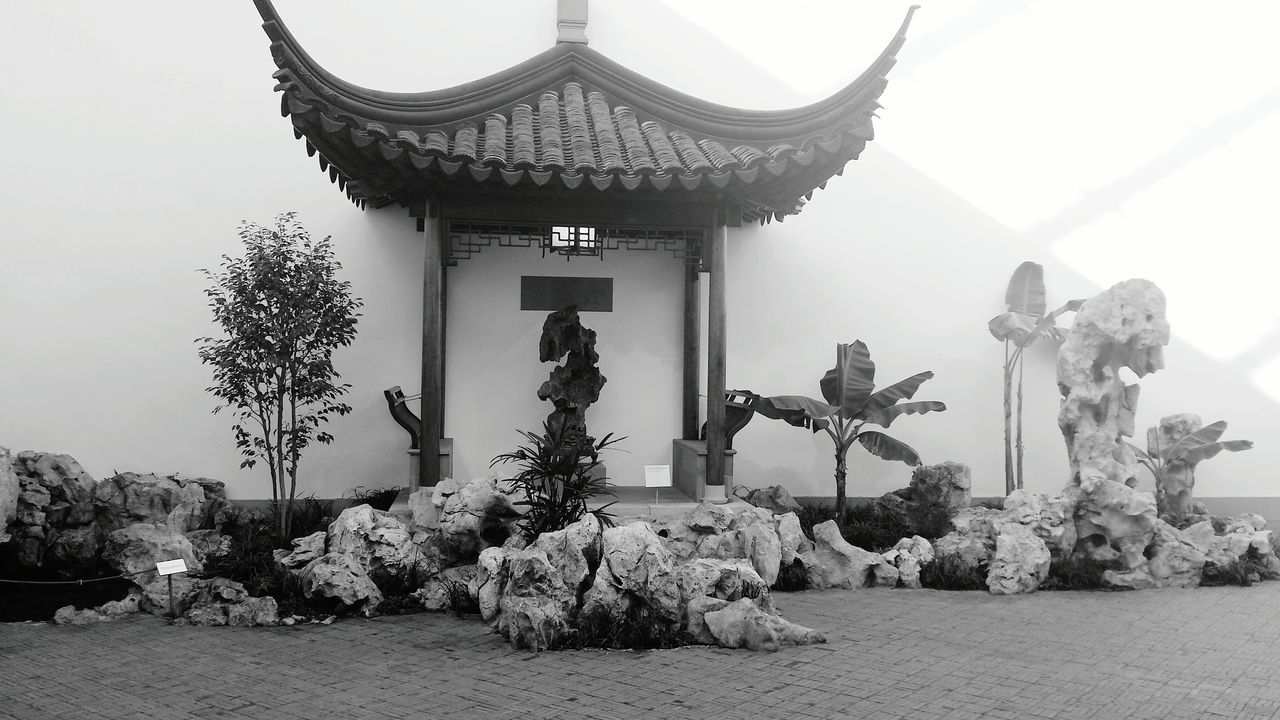 The Metropolitan Museum Of Art Asian Garden Coy Pond