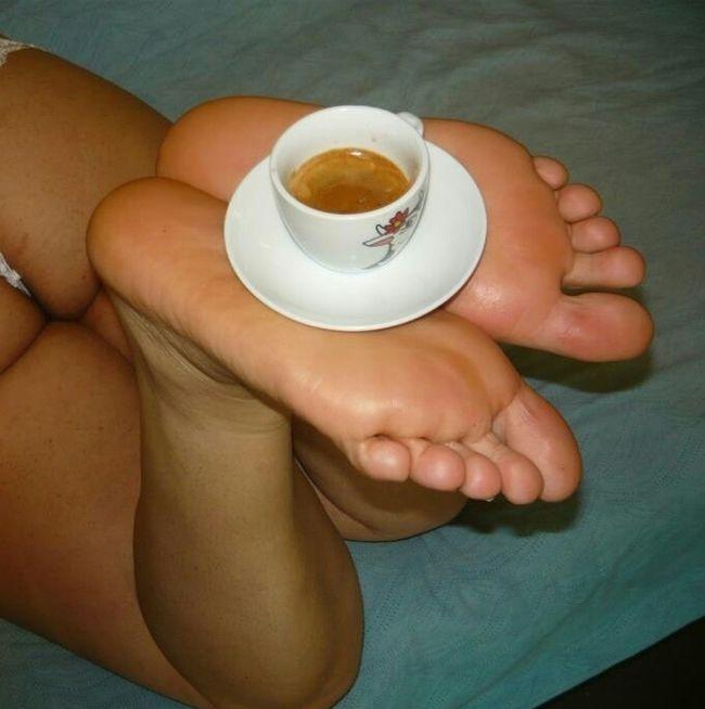 piante al caffe