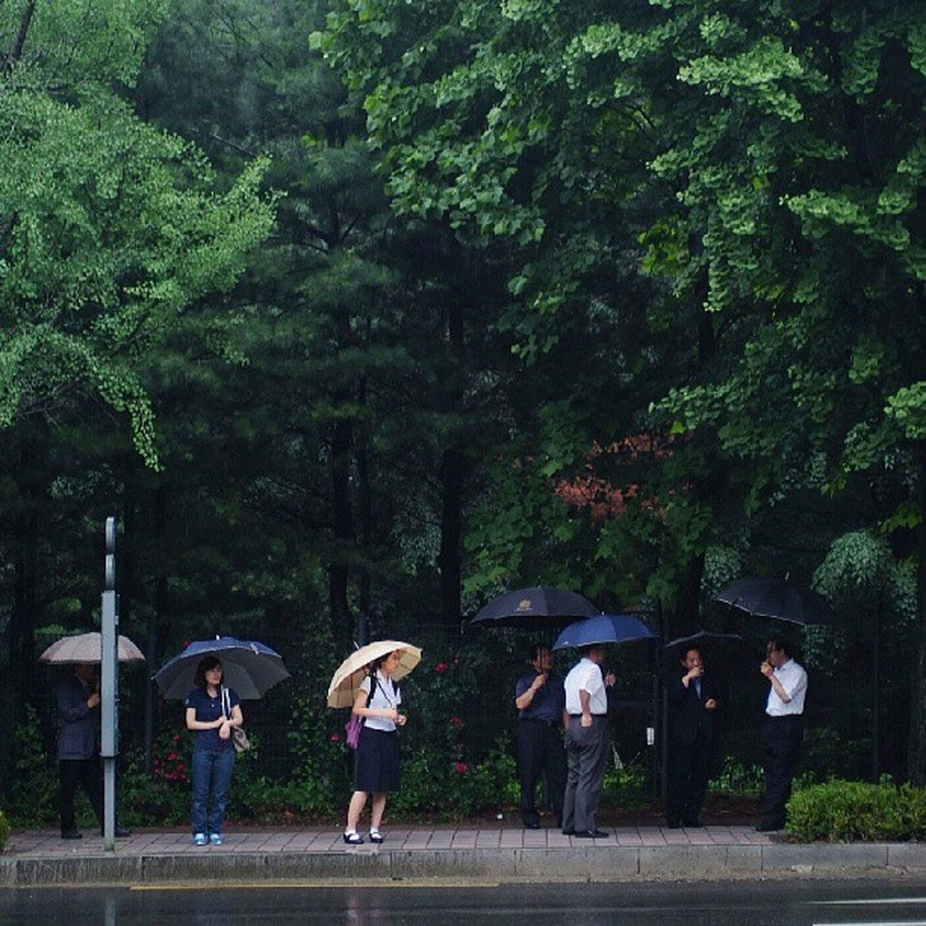 Robin_theme15 City of rain 빗소리가 반가운 아침 신림동