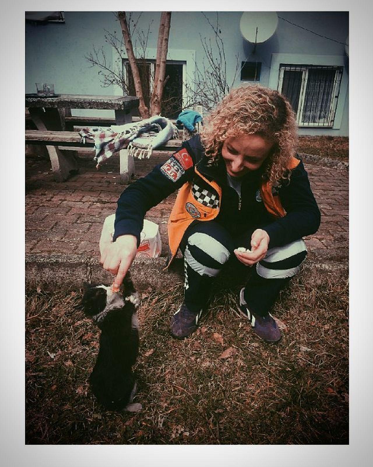 Peluş Ayımız Olmazsa Peluş Kedimiz Olur 14şubat 6044 Cat Lovers Pakize ☝☝✌ Kırmızı şeritli Lady Driver