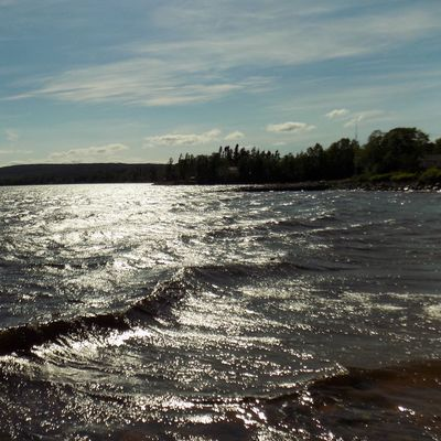 Snaps from Gambo Pond. I used to swim here for hours every Summer day that I could as a kid. Feeling the nostalgia for sure! Beauty Blue Skies Canada Close Up Clouds Crashing Waves  Feet Gambo NL Gambo Pond Golden Hues IPhoneography Landscape Looking Down Nature Newfoundland Nikon Nikon L340 Rocks Shot On IPhone 6s Sky Surf Trees Water Waves Wide Angle