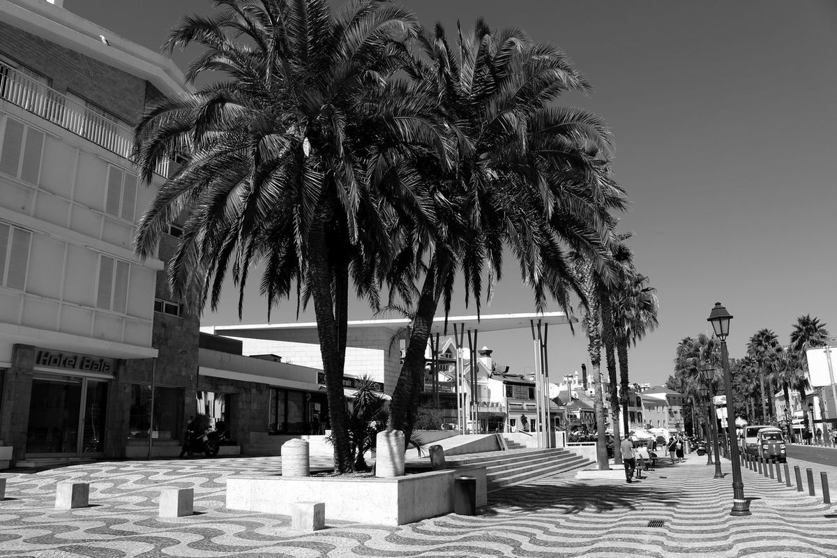 Cascais Hotel Palm Trees Minimalism Eye4photography  Streetphotography Bnw Eyeemphotography Pattern, Texture, Shape And Form EyeEmbestshots EyeEmBestPics Pattern Pieces Black&white Eye4blackandwhite Black & White Eye4black&white  EyeEm Bnw Black And White Urban Landscape Sky And Clouds Blackandwhite Cobblestone Taking Photos at Baia De Cascais Portugal