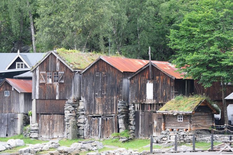 Fishing Village Norway Ramshackle Architecture Building Exterior Built Structure Fishing Huts Outdoors Traditional Wood - Material