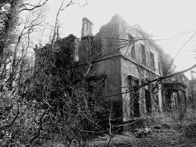 Check This Out Derelict Building Old Mansion Hanging Out Amature Photography EyeEm Gallery Black And White Photography Overgrown Forgotten Places Abandoned & Derelict Abandoned House Exploring New Ground Overgrown And Beautiful Eyem Best Shots Monochrome Photography