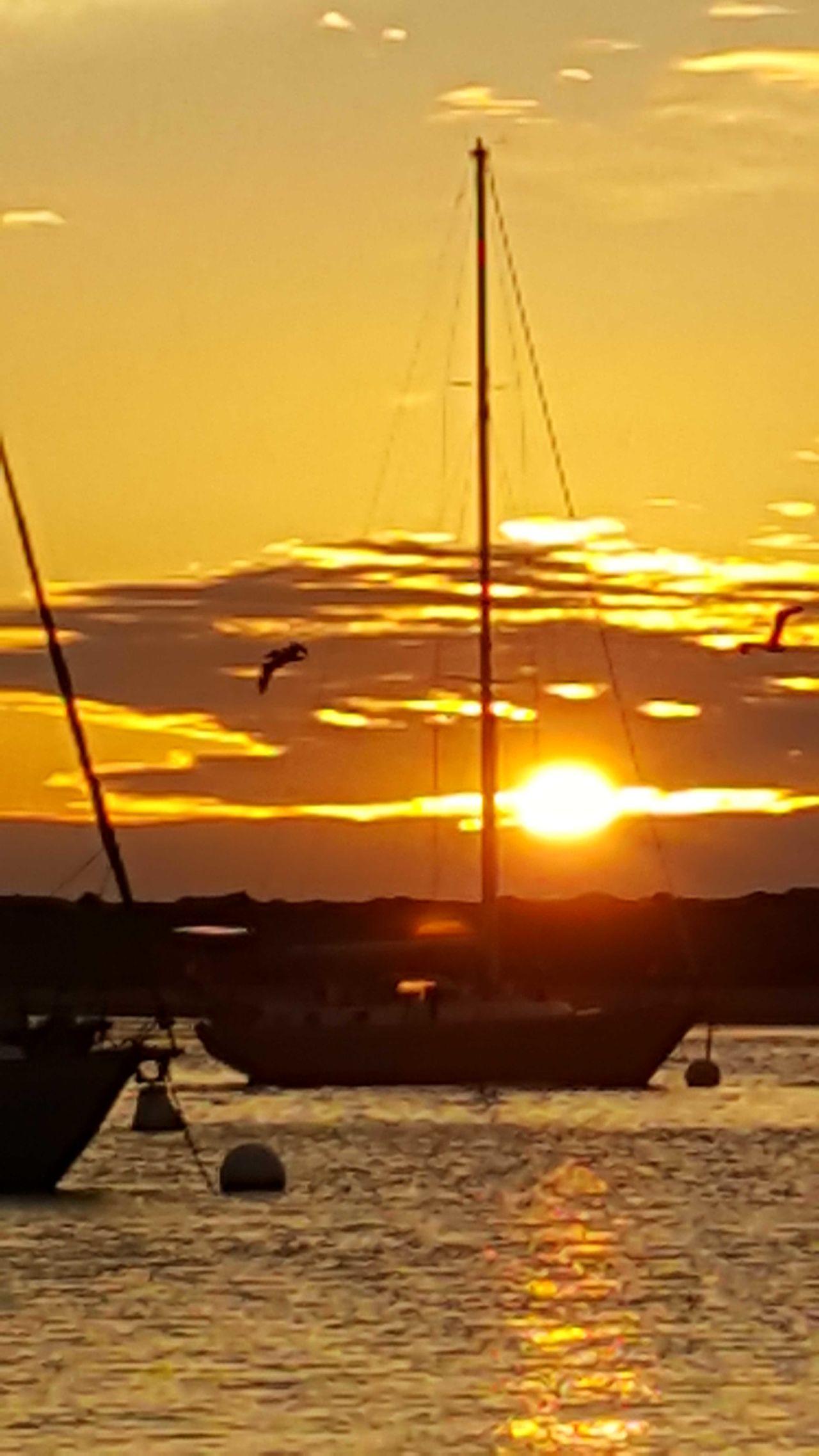 Sunset Water Sky Sea Nautical Vessel No People Orange Color Orange Sky Boats Reflection Harbor Sea And Sky Cloud - Sky Outdoors Orange Silhouette Bird Photography Flying Bird