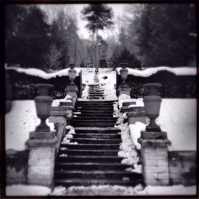 blackandwhite photography at chatsworth by Claudia Cee