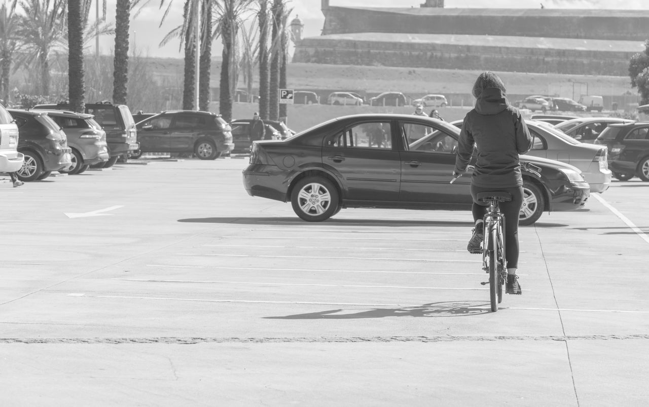 transportation, real people, mode of transport, land vehicle, one person, bicycle, car, full length, day, outdoors, rear view, lifestyles, men, sunlight, road, tree, people
