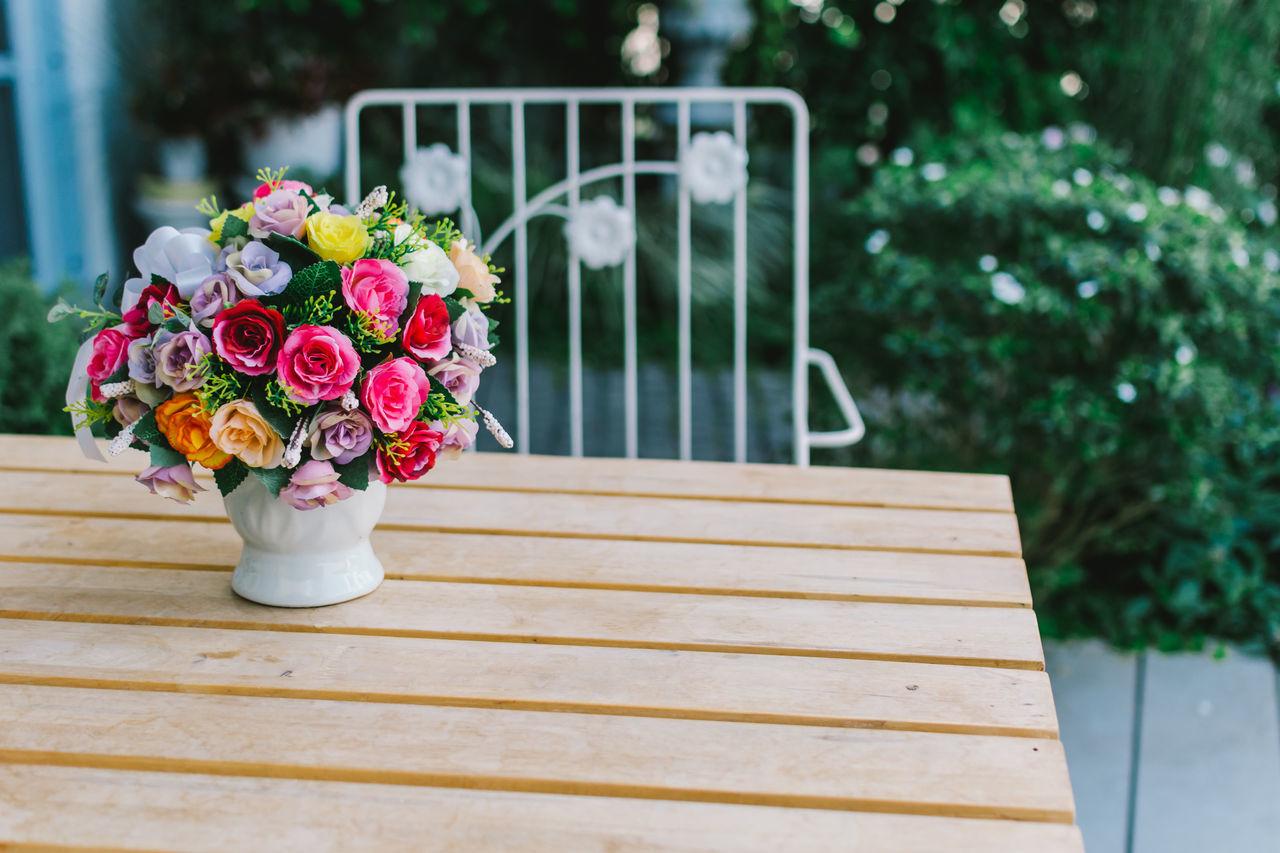 Beautiful stock photos of thailand, flower, freshness, fragility, plant