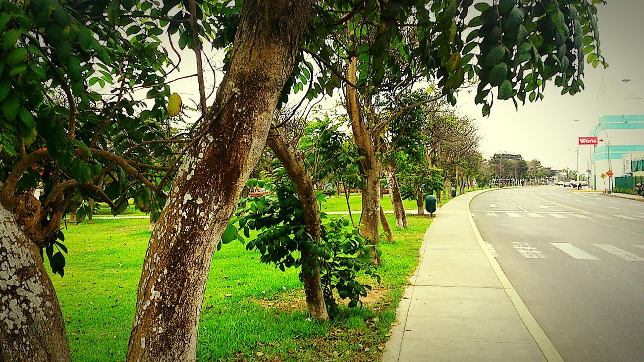 Lima Park Cityscape Home Fatherland