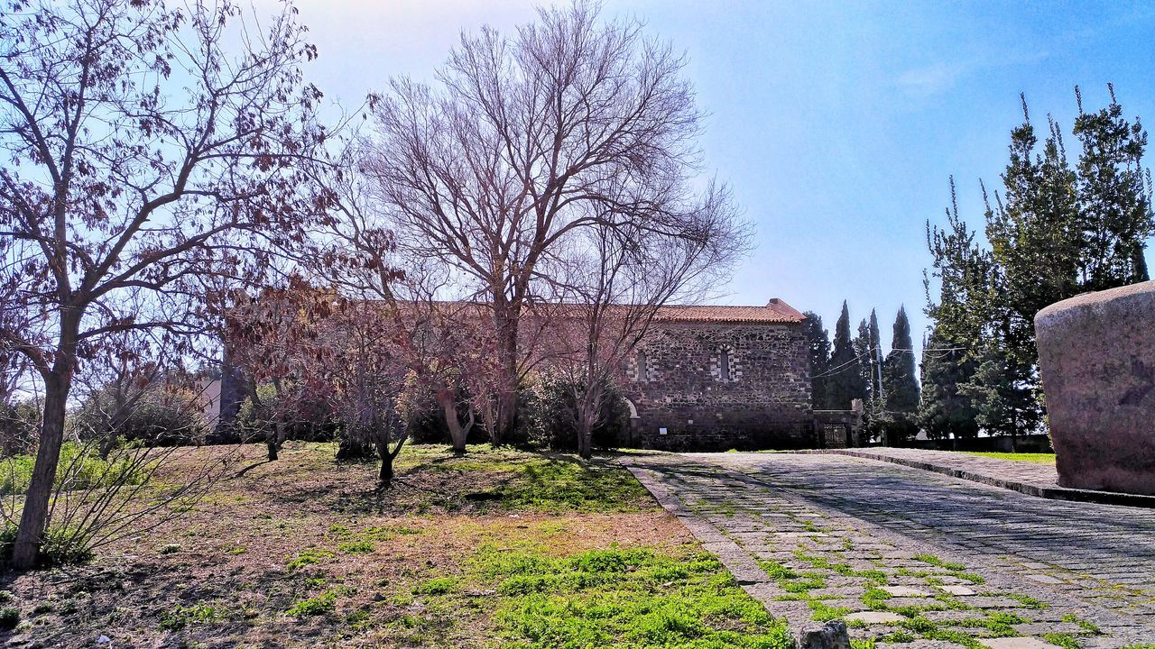 Ancient Architecture Back Light Bare Tree Cloister Convent Day Green Growth History Italy Medieval Monuments Nature No People Old Buildings Outdoors Paterno Religion Sicily Sky St. Francis Tree