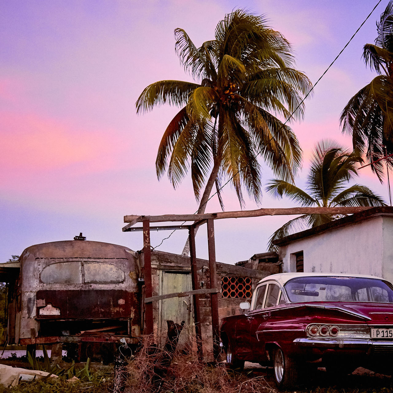 Rundown area of Playa Large, Cuba hiding this beautiful Chevrolet Impala with a gorgeous sunset American Classics Beautiful Car CHEVROLET IMPALA Classic Cars Colorful Colourful Cuba Cuban Cars Impala Palm Tree Rundown Sky Sunset Sunset_collection Transportation Tree First Eyeem Photo