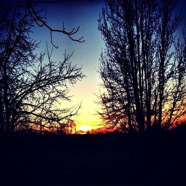 Lovely sunset tonight! Watching The Sunset