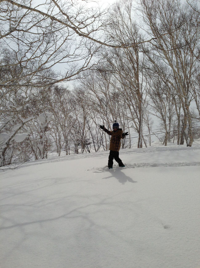 Bare Tree Cold Temperature Covering Day Full Length Japan Jpow Leisure Activity Lifestyles Men Nature Niseko Niseko Japan Powder Powderdays Rear View Season  Snow Tree Walking Warm Clothing Weather White Color Winter