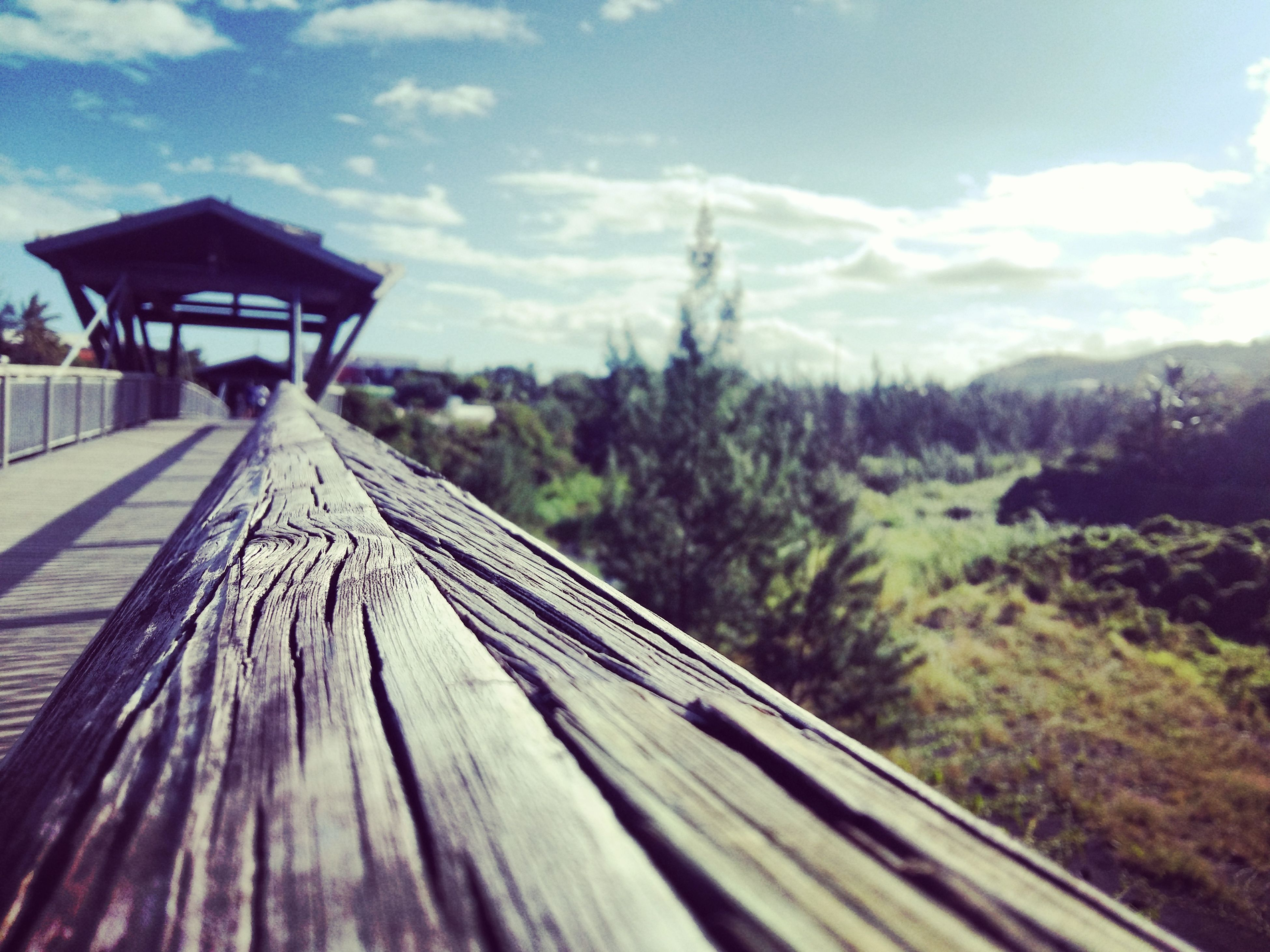 sky, wood - material, the way forward, tree, wooden, boardwalk, cloud - sky, wood, cloud, nature, railing, tranquility, selective focus, surface level, tranquil scene, day, outdoors, built structure, focus on foreground, diminishing perspective