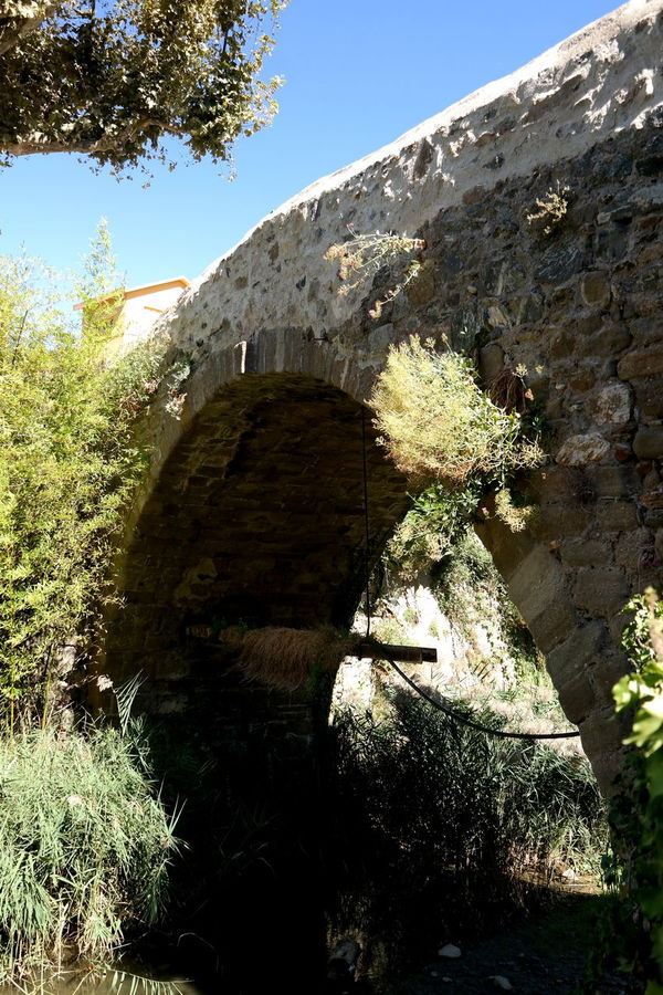 Arch Beauty In Nature Bridge Bridgeporn Collobrieres Cotedazur Côte D'Azur Eye4photography  EyeEm Best Shots EyeEm Gallery EyeEmBestPics France From My Point Of View Hot Day Landscape_Collection Landscape_photography Low Angle View Nature Old Village France Stone Bridge Sunlight The Week On EyeEm Tranquil Scene Tranquility Tree