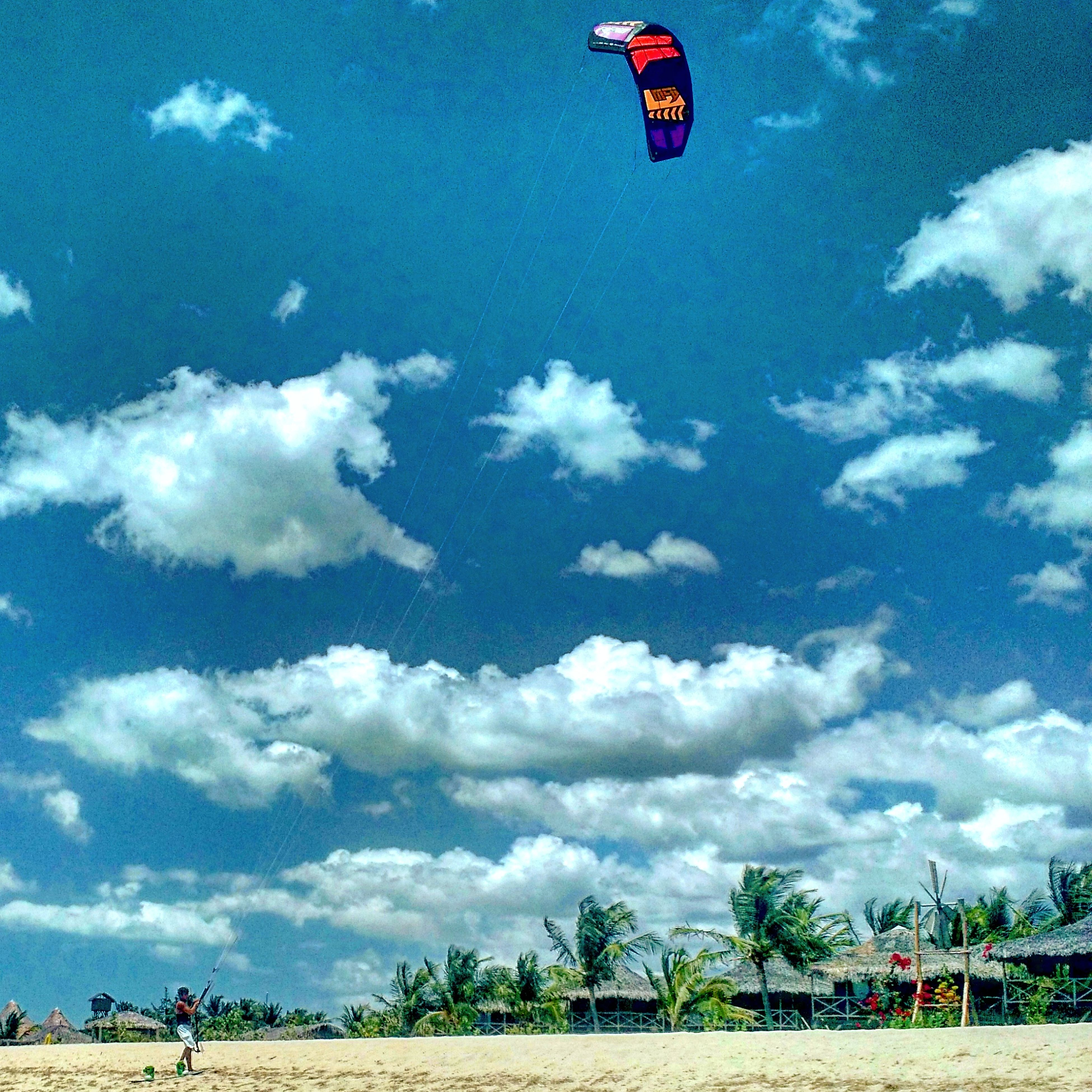 transportation, sky, mode of transport, leisure activity, cloud - sky, mid-air, lifestyles, flying, sport, men, travel, day, cloud, parachute, adventure, tree, extreme sports, vacations, incidental people