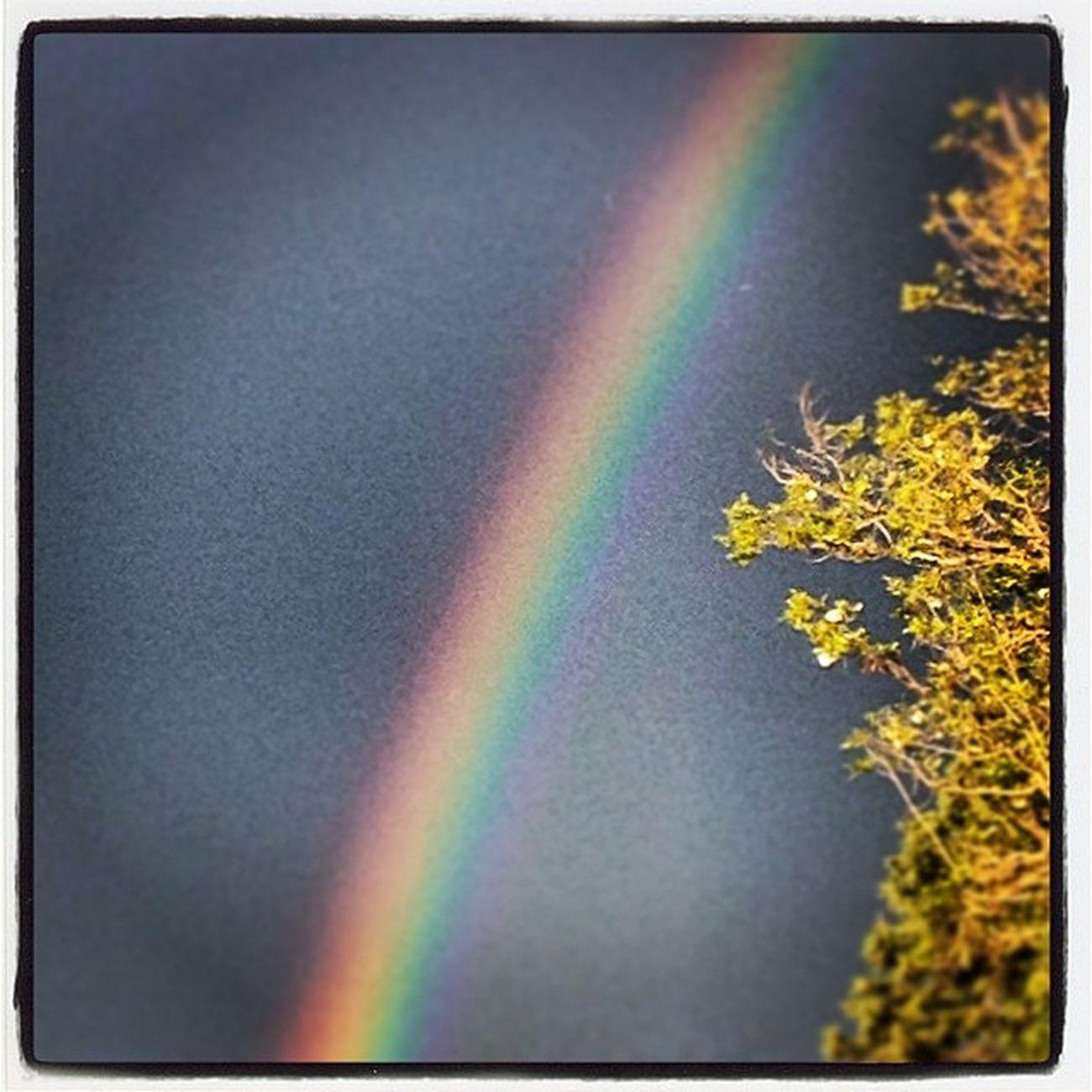 Se il buongiorno si vede dal mattino .... #instagram #igersitalia #igerspuglia #websta #rainbow #sky